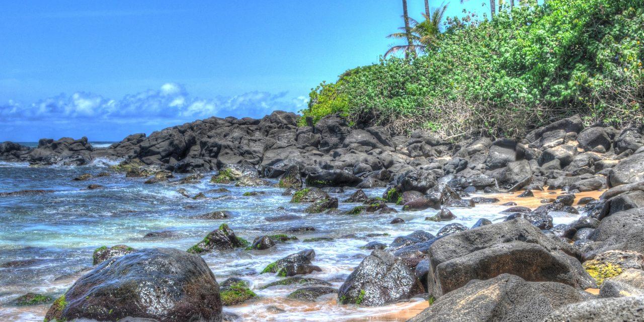 Laniakea Beach – OAHU, Hawaii